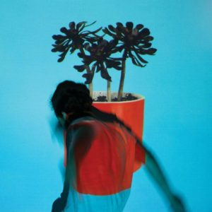 local-natives-cd