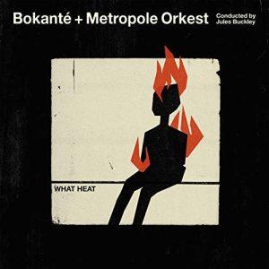 Bokante + Metropole Orkest – What Heat