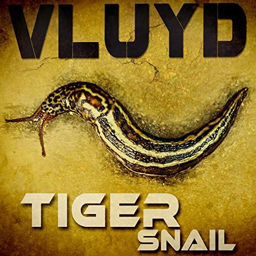 Vluyd – Tiger Snail