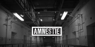 Film Amnestie